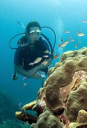 Day Diving in Pattaya